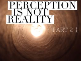 Perception Is NOT Reality – Part II