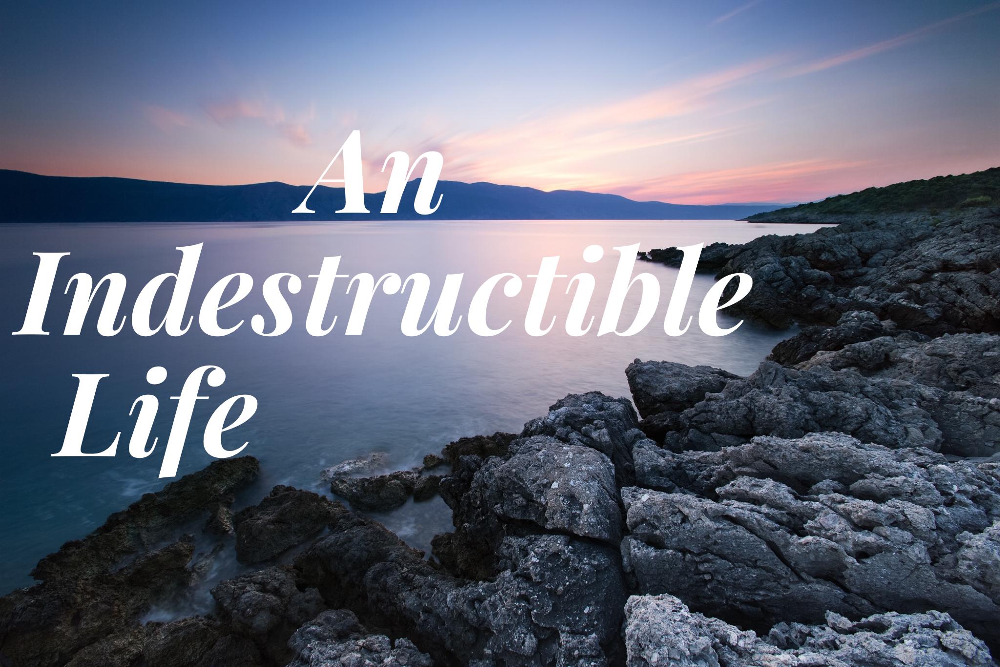 An Indestructible Life