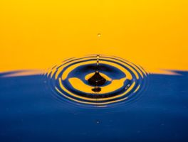 The Ripple Effect (20,000 by 2020)